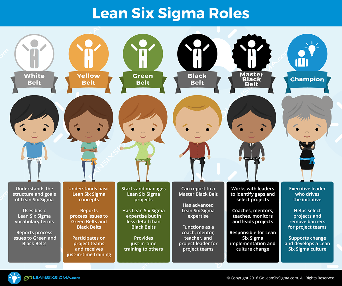 The Roles Of Lean Six Sigma - GoLeanSixSigma.com