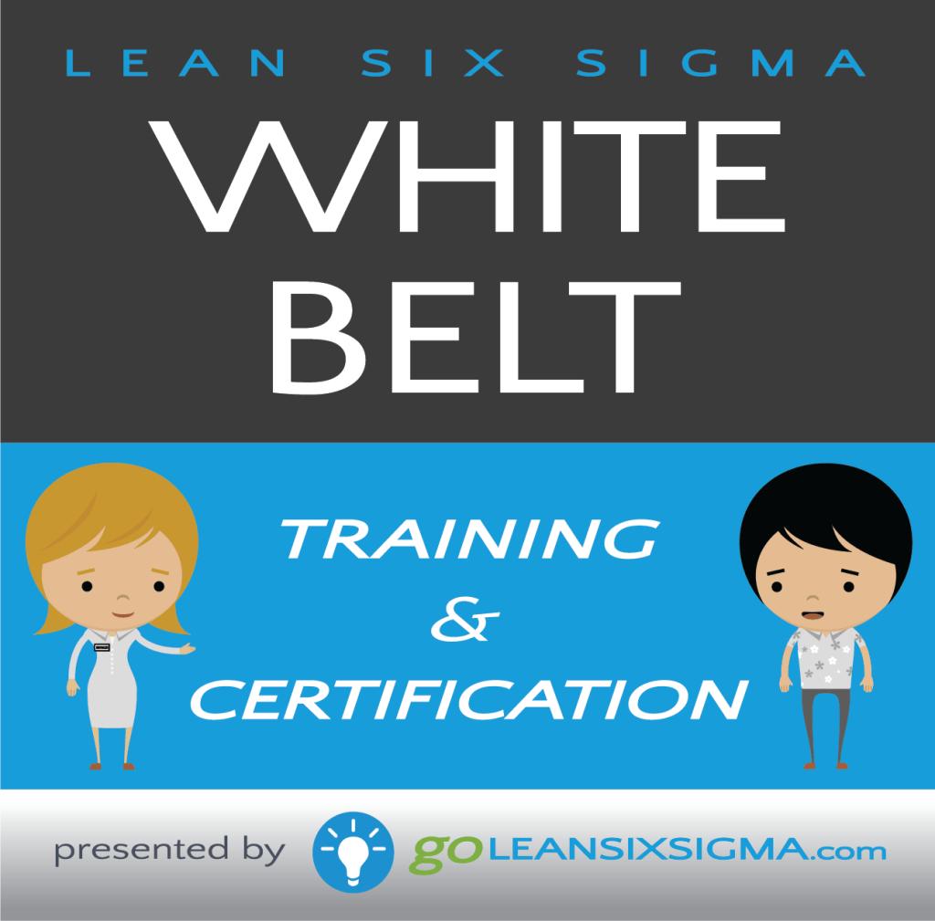 White Belt Training & Certification