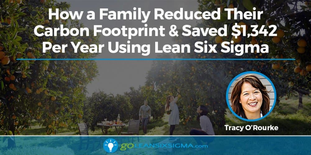 How A Family Reduced Their Carbon Footprint And Saved $1,342 Per Year Using Lean Six Sigma - GoLeanSixSigma.com