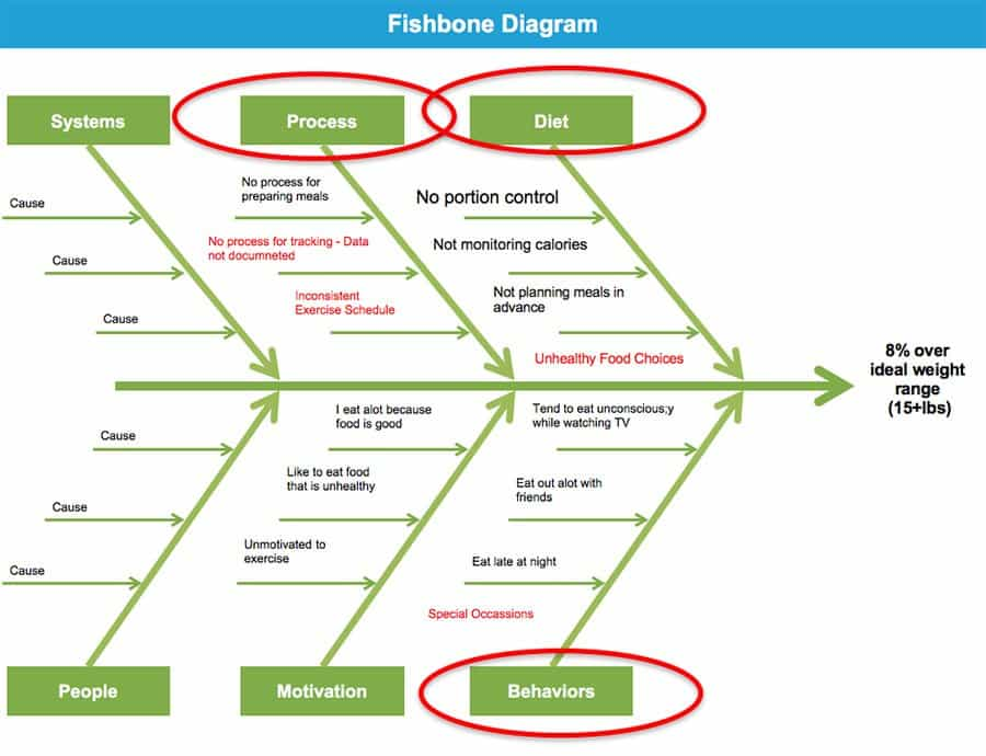 Fishbone Diagram - How to Lose Weight Using Lean Six Sigma - GoLeanSixSigma.com