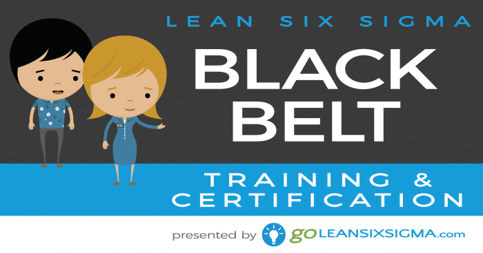 Online Black Belt Training – Course Outline