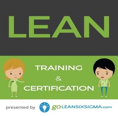 Bundle: Yellow Belt + Lean Training & Certification