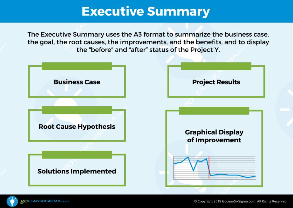Executive Summary - GoLeanSixSigma.com