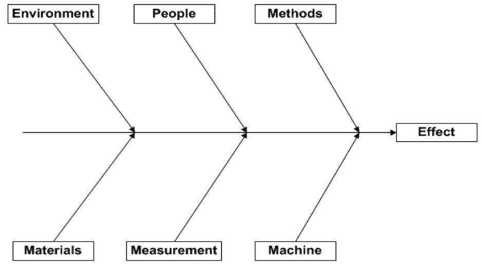Figure 1 - Fishbones