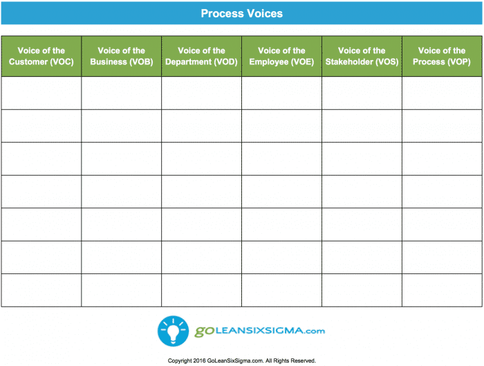 voice of customer templates Process Voices - GoLeanSixSigma.com