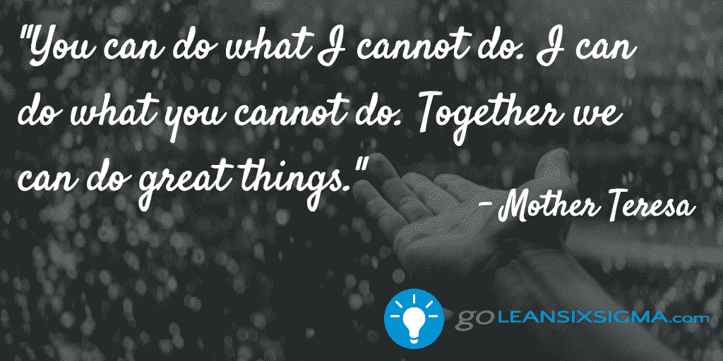 You can do what I cannot do. I can do what you cannot do. Together we can do great things. - GoLeanSixSigma.com