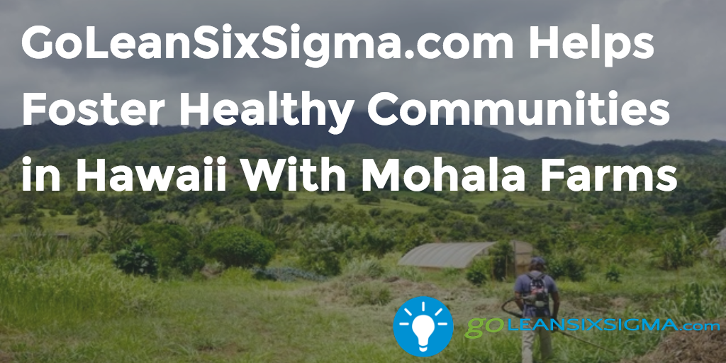GoLeanSixSigma.com Helps Foster Healthy Communities In Hawaii With Mohala Farms