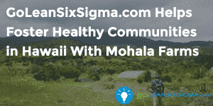 GoLeanSixSigma.com Helps Foster Healthy Communities in Hawaii With Mohala Farms - GoLeanSixSigma.com