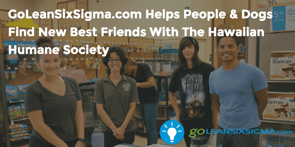GoLeanSixSigma.com Helps People Dogs Find New Best Friends With The Hawaiian Humane Society - GoLeanSixSigma.com