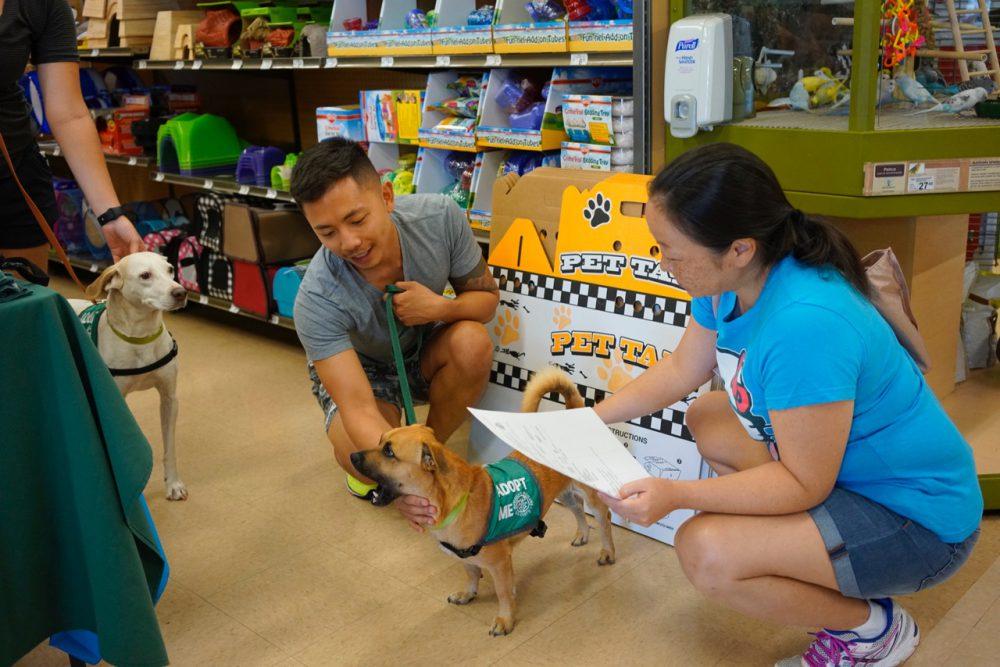petting_humane_society