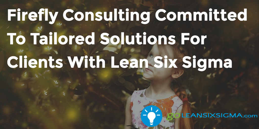 Firefly Consulting Committed To Tailored Solutions For Clients With Lean Six Sigma