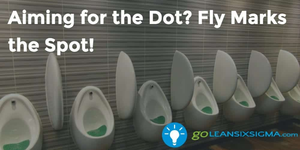 Aiming For The Dot Fly Marks The Spot Goleansixsigma Com