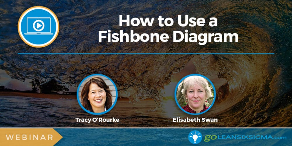 Webinar: How to Use a Fishbone Diagram - GoLeanSixSigma.com