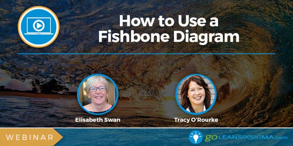 Webinar: How To Use A Fishbone Diagram - GoLeanSixSigma.com