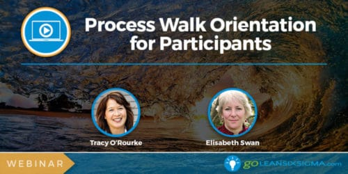 Webinar: Process Walk Orientation for Participants - GoLeanSixSigma.com