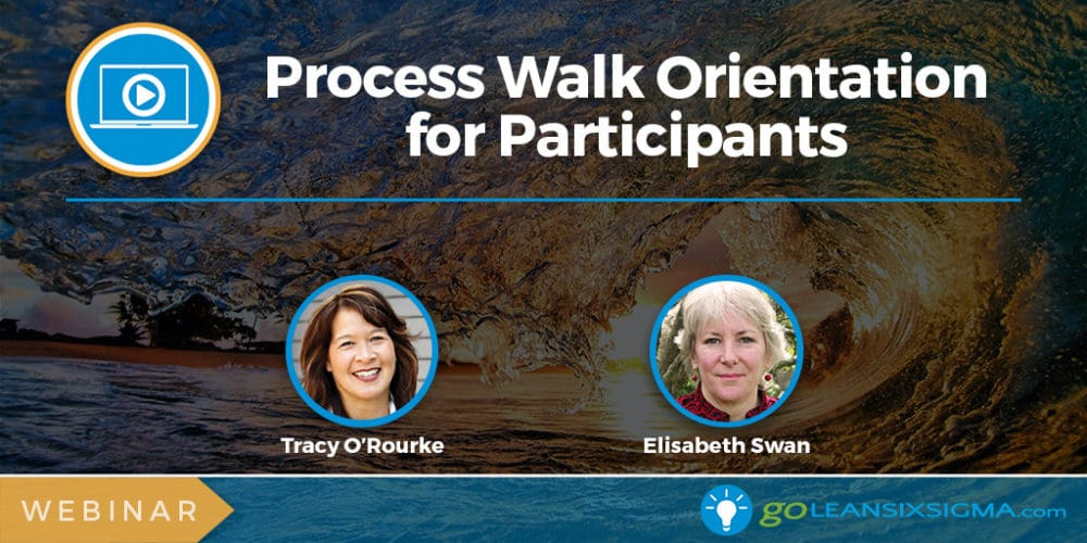 Webinar: Process Walk Orientation For Participants