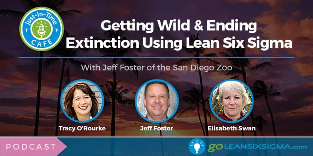 Just-In-Time Cafe Podcast, Episode 14: Getting Wild & Ending Extinction Using Lean Six Sigma With Jeff Foster Of The San Diego Zoo