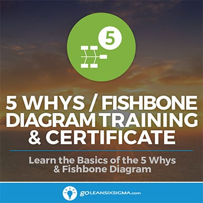 5 Whys & Fishbone Diagram Training & Certificate