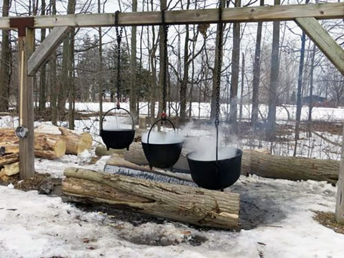 Creating Maple Syrup - GoLeanSixSigma.com