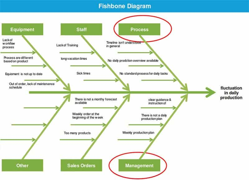 Alexander Paselk Black Belt Project Storyboard - Fishbone Diagram - GoLeanSixSigma.com