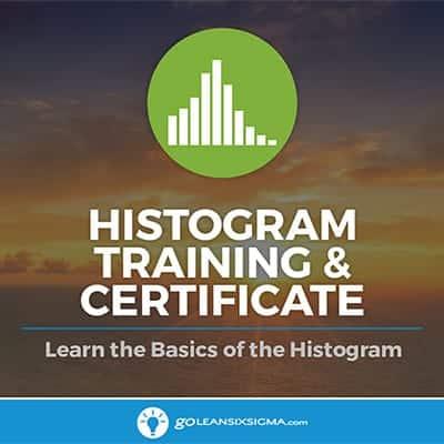 Histogram Training - GoLeanSixSigma.com