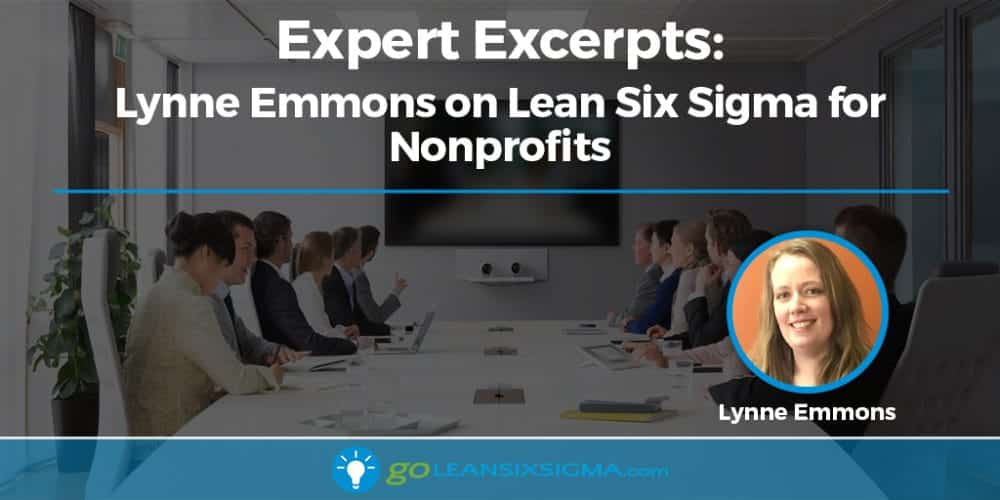 Expert Excerpts: Lynne Emmons On Lean Six Sigma For Nonprofits - GoLeanSixSigma.com