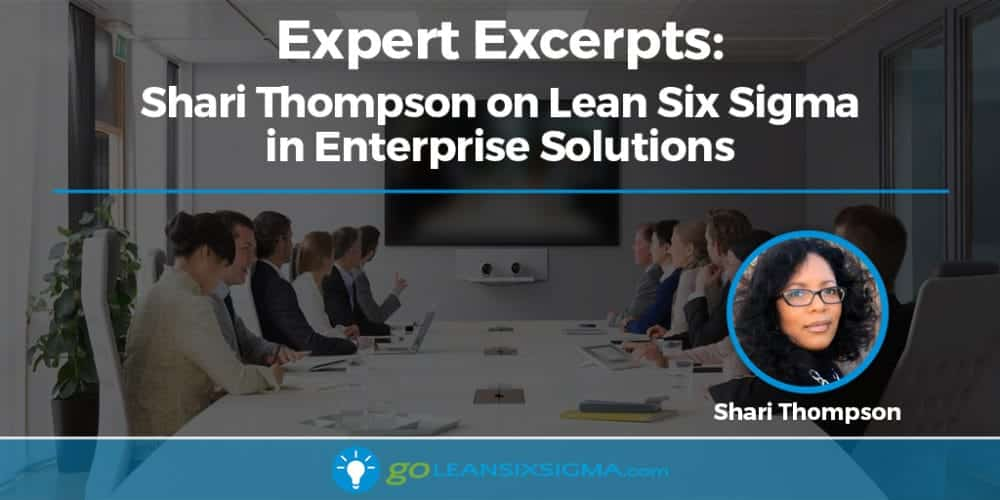 Expert Excerpts: Shari Thompson On Lean Six Sigma In Enterprise Solutions - GoLeanSixSigma.com