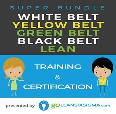 Super Bundle: White Belt + Yellow Belt + Green Belt + Black Belt + Lean - GoLeanSixSigma.com