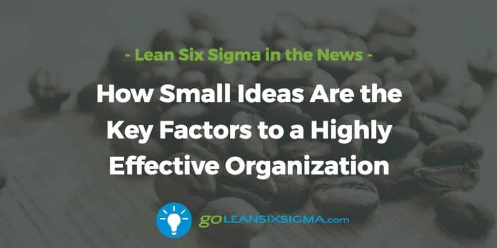 Small-ideas-factors-effective-organization_GoLeanSixSigma.com