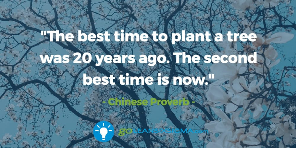 The Best Time To Plant A Tree Was 60 Years Ago The Second Best Time Simple Best Proverb With Picture