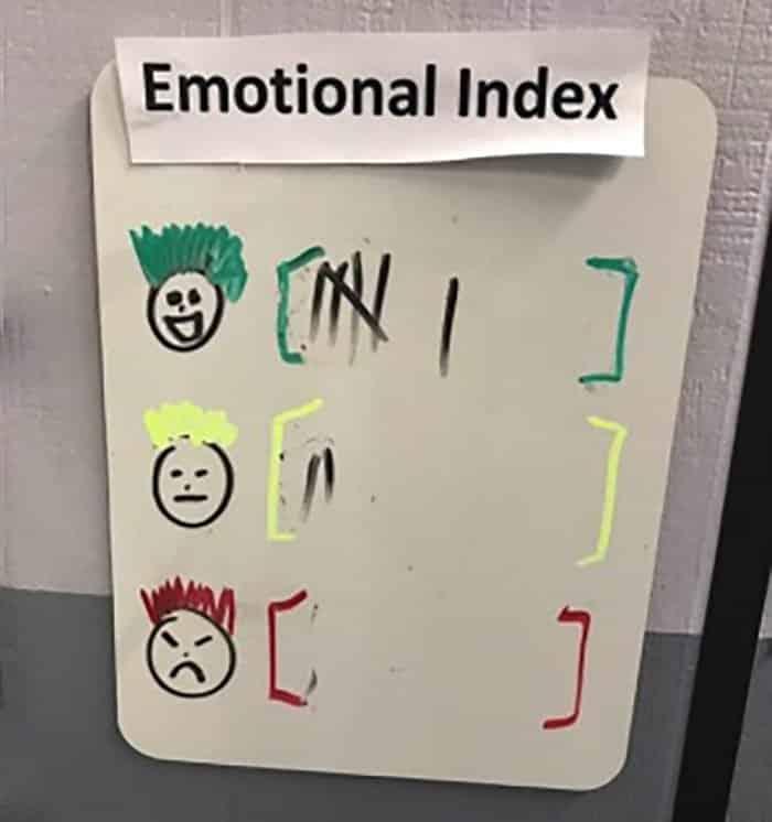 Lean Six Sigma Is Everywhere: Emotional Index - GoLeanSixSigma.com
