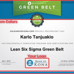 Enterprise Custom Certificate - GoLeanSixSigma.com