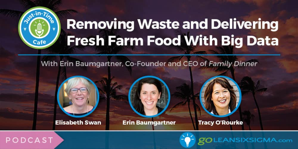Podcast: Just-In-Time Cafe, Episode 55 – Removing Waste and Delivering Fresh Farm Food With Big Data, Featuring Erin Baumgartner - GoLeanSixSigma.com