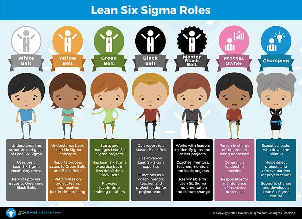 Lean Six Sigma Roles - GoLeanSixSigma.com