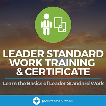 Leader standard work training