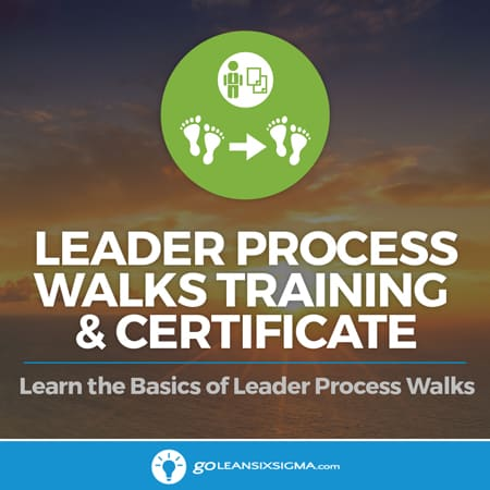 Leader process walks training