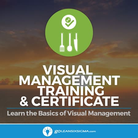 Visual Management Training & Certificate - GoLeanSixSigma.com