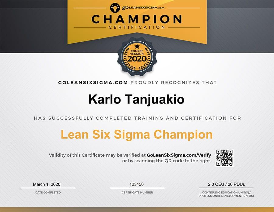 Champion Training & Certification - GoLeanSixSigma.com
