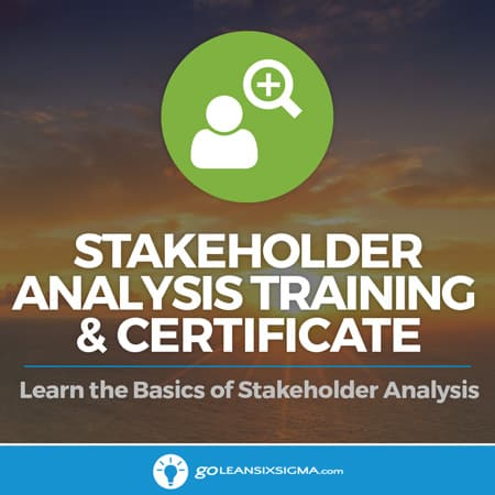 Stakeholder Analysis Training & Certificate